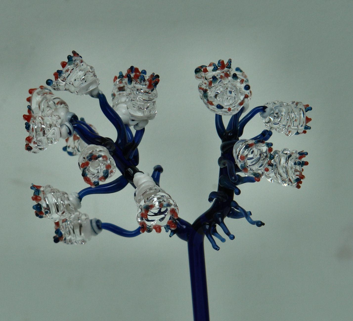 anemoontjes