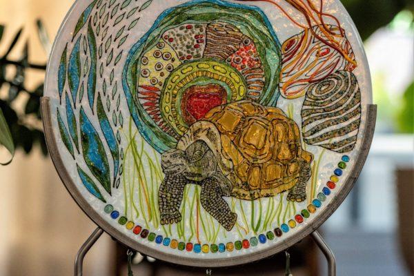 Krachtschild Schildpad